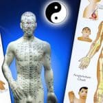 Meridians of Chinese Medicine