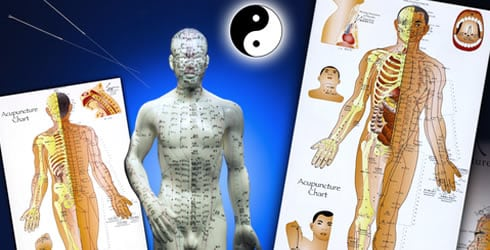 Energy Pathways of Chinese Medicine