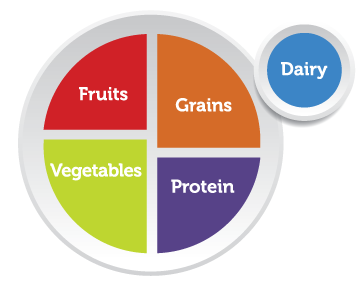 USDA My Plate nutrition guide