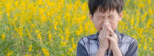 Allergy Season — Whoa!